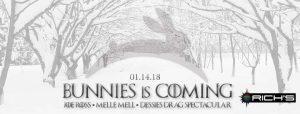 Snow Bunnies Banner